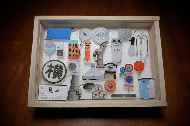 日常採集標本箱イメージ写真