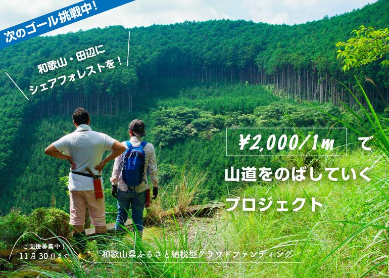 みんなで遊び倒せる山をつくりたい! 代々受け継ぐ山林を未来につなぐ山づくり【ふるさと納税型】