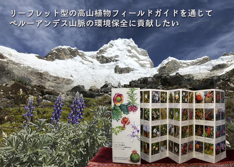 リーフレット型の高山植物フィールドガイドを通じて、ペルーアンデス山脈の環境保全に貢献したい