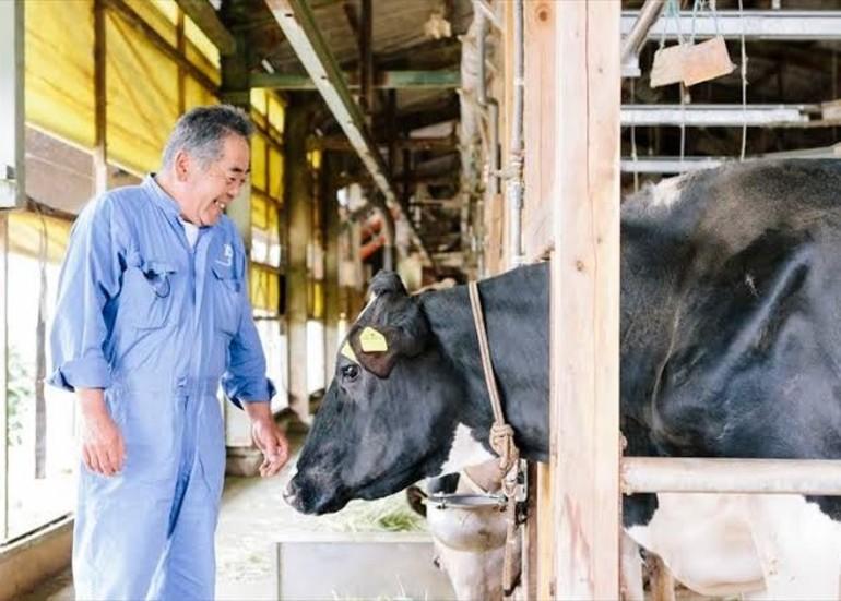 コロナに負けない!酪農家が作った富士の国乳業を応援 ~子や孫に美味しい給食牛乳を届けたい~