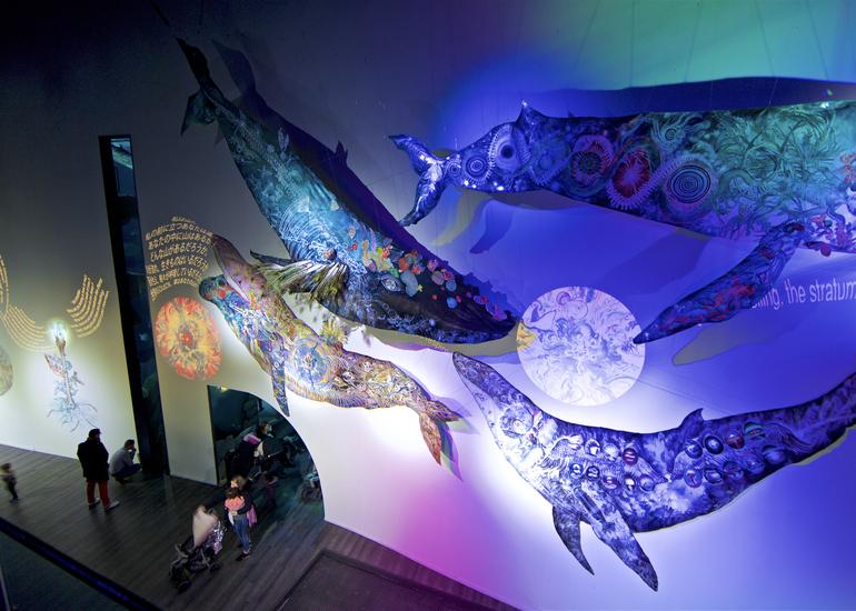 《鯨の目 Eye of Whale》大小島 真木・アートブック制作プロジェクト